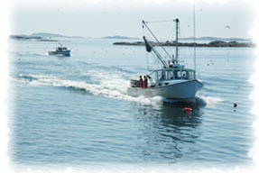 Insurance for Fishing Boats